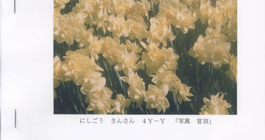 Scan10015